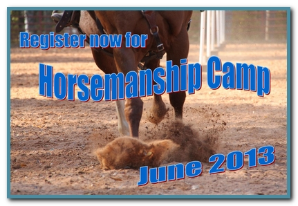 Learn more about summer horse camp.
